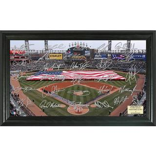 Chicago White Sox Signature Field
