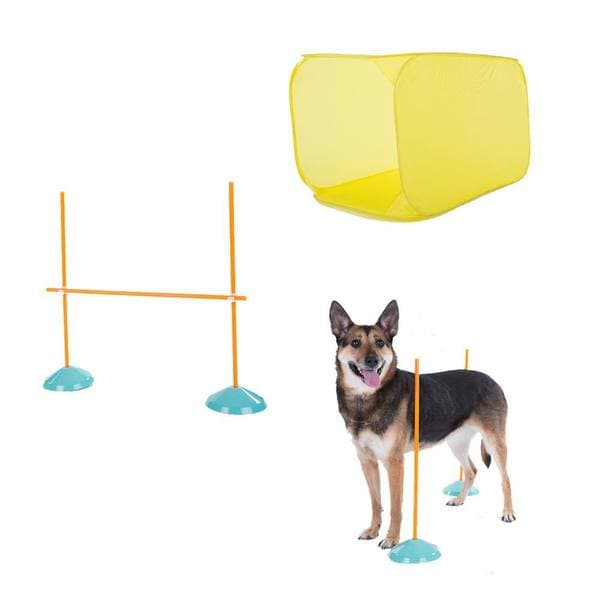 Kyjen Outward Hound Dog Agility Starter Kit Indoor