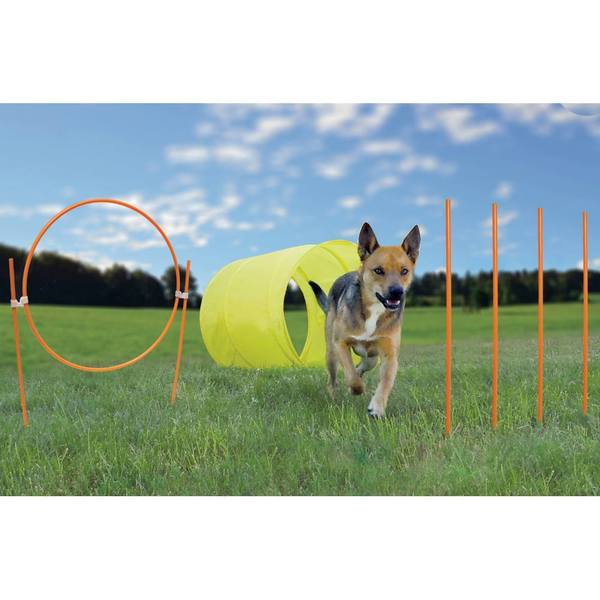 Kyjen Outward Hound Dog Agility Starter Kit Outdoor