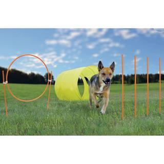 Kyjen Outward Hound Dog Agility Starter Kit Outdoor