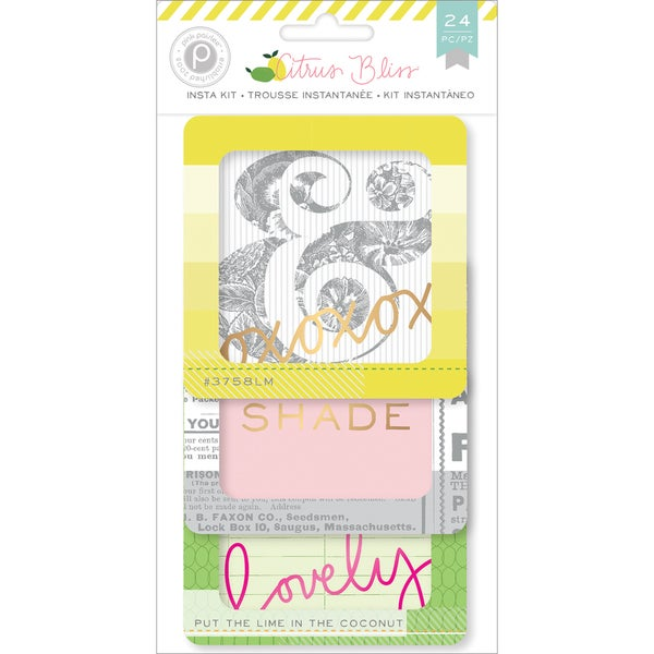 Citrus Bliss Instagram Cards 4inX4in 24/Pkg