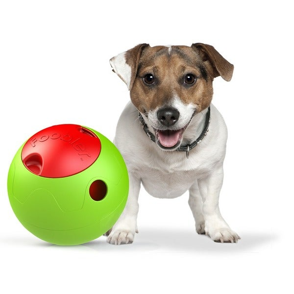The Foobler Timed, Self Reloading Puzzle Feeder for Dogs toy Ball 15411271