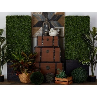 Exclusive and Utmost Beautiful Boxwood Hedge