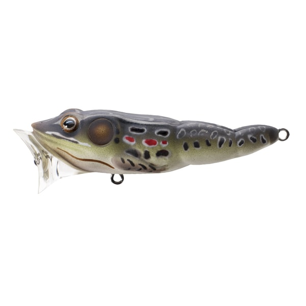 LiveTarget Frog Popper Brown/ Black no. 6