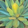 Portfolio Canvas Decor Elinor Luna 'Agave' Framed Canvas Wall Art