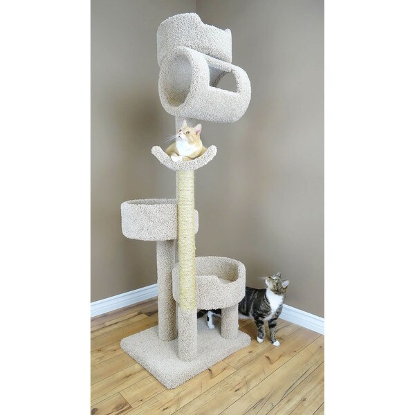 New Cat Condos Premier Twin Towers