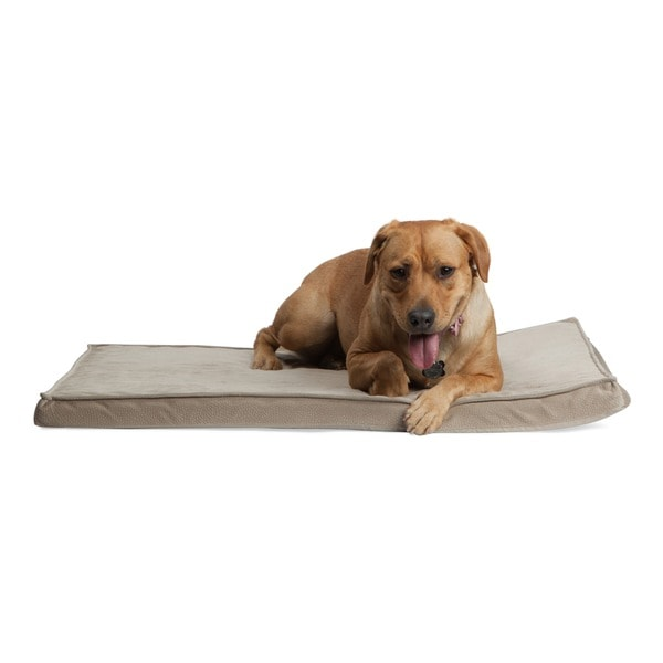 Best Friends by Sheri Ilan Joint Relief Nap Mat