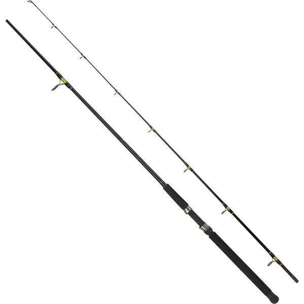 South Bend Black Beauty 2 Spinning Rod