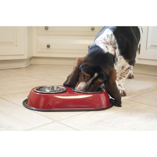Iconic Pet Color Splash Stainless Steel Double Diner