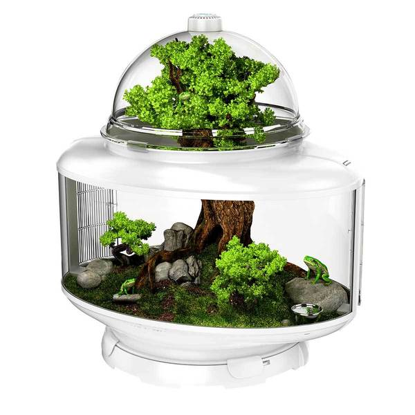 Bio Bubble Terrarium Reptile