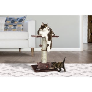 Cat Playground Scratching Post with Cat- IQ Busy Box