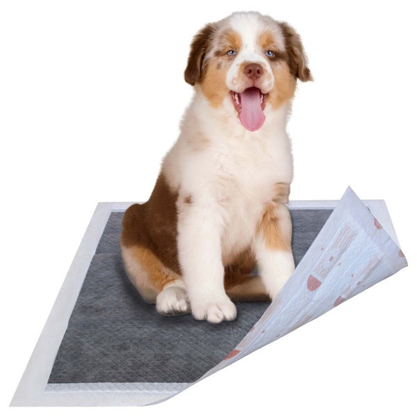 Ultra Absorbent Charcoal Odor Eliminating Anti-skid and Anti-bacterial Diabetic Premium Dog Training Pads