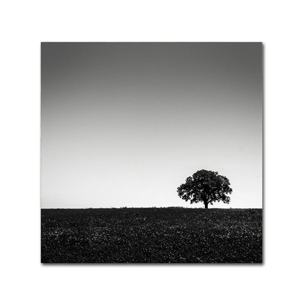 Dave MacVicar 'One Tree Hill' Canvas Art