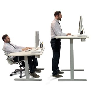 Premium Standing Desk, Ergonomic Wood Table Top, Programmable Memory Pad
