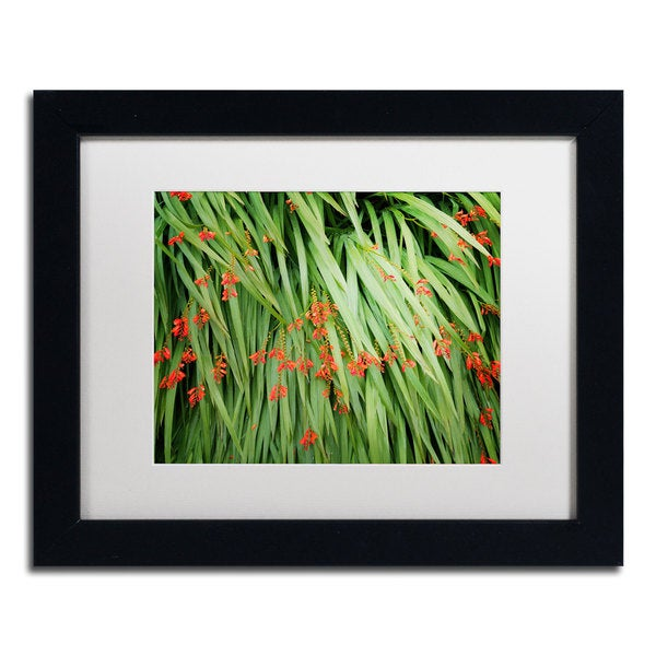 Philippe Sainte-Laudy 'True Colours' Matted Framed Art
