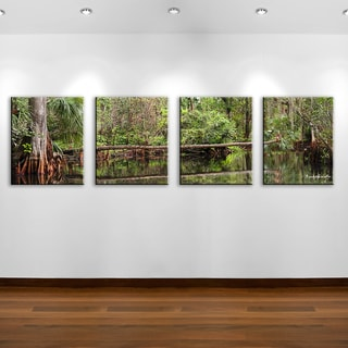 Ready2HangArt Bruce Bain 'Purely Natural I' 4-pc Canvas Art Set