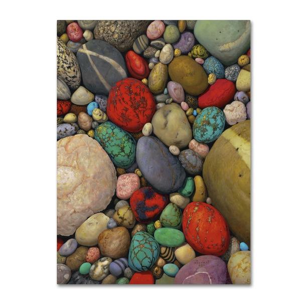 Stephen Stavast 'Shallows of Treasure Creek' Canvas Art