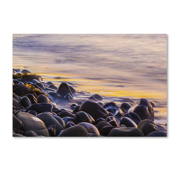 Chris Moyer 'Wet Rock Reflections' Canvas Art
