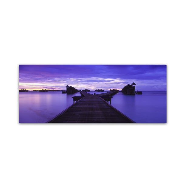 David Evans 'Waterworld-Maldives' Canvas Art