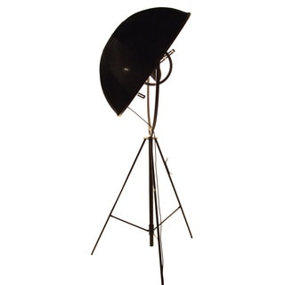 Fortune Black 1-light Floor Lamp