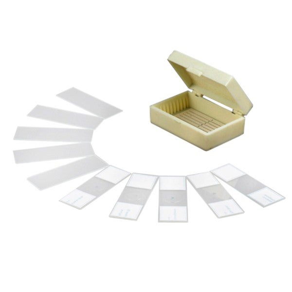 10 Prepared and Blank Microscope Glass Slides
