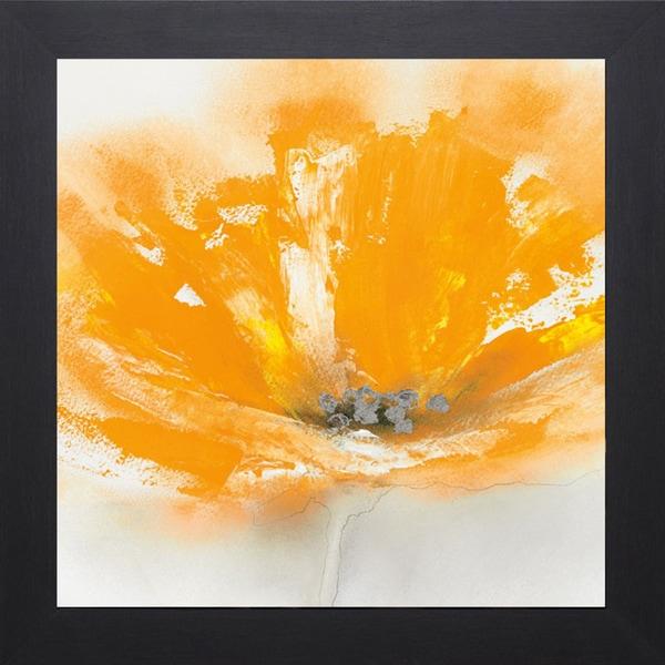 J.P. Prior 'Wild Orange Sherbet l' 28 x 28 Framed Art Print