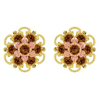 Lucia Costin Gold Over Silver Brown Crystal Stud Earrings