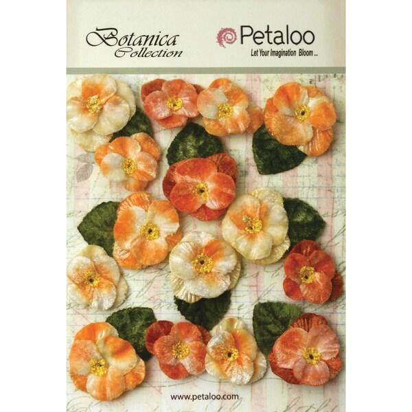 Botanica Vintage Velvet Pansies 1in To 1.5in 15/Pkg Apricot