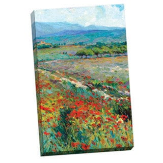 Dean Bradshaw 'View of Provence' Framed Canvas Wall Art