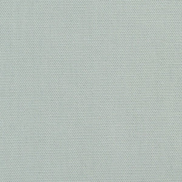 A508 Pale Green Solid Cotton Preshrunk Canvas Duck Upholstery Fabric by The Yard