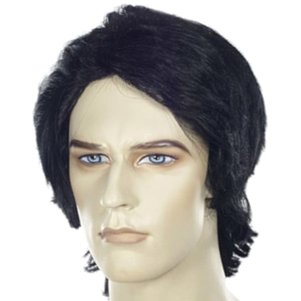 Long Black Mens Wig Fulton Reed Shane Falco Mighty Ducks Wayne Wayne's World