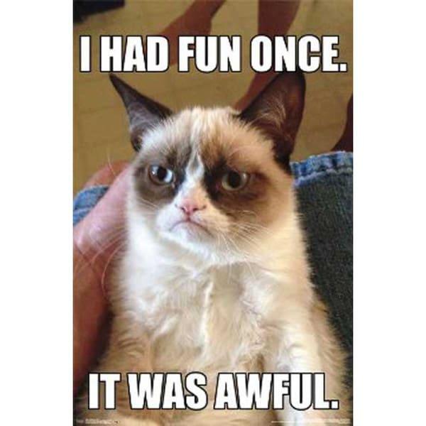 Grumpy Cat I Had Fun Once It Was Awful Poster