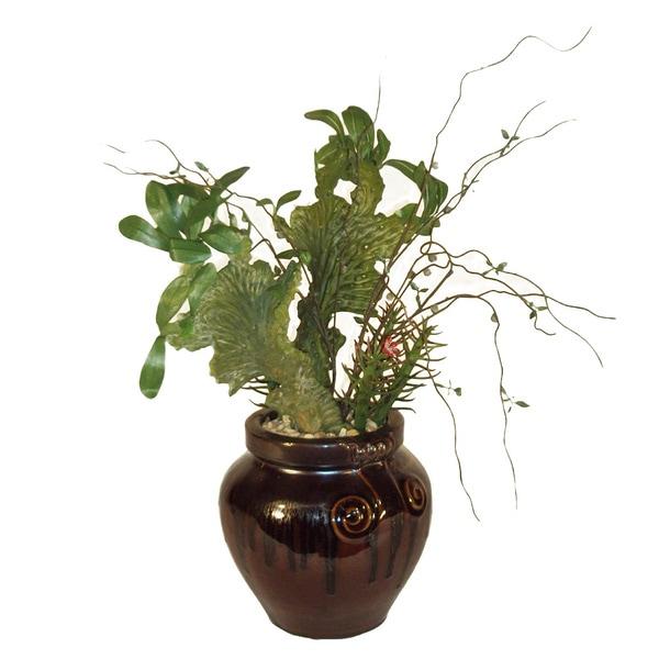 Classic Cactus Potted Plant