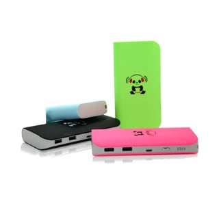 iPanda 12k Mah Dual USB Heavy-duty Power Bank with Flashlight