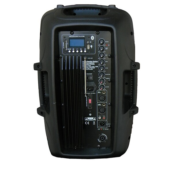 12-inch Self-powered MP3 Player Portable Speaker with Wireless Mic
