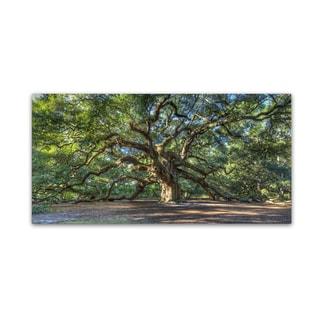 Pierre Leclerc 'Angel Oak Charleston' Gallery Wrapped Canvas Wall Art