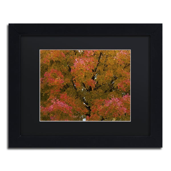 Kurt Shaffer 'Autum Maple Splendor' Black Framed Canvas Wall Art