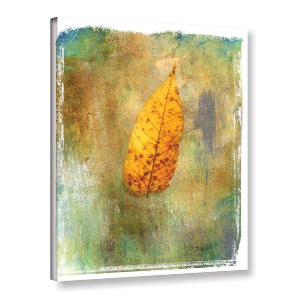 ArtWall Elena Ray ' Leaf Ii ' Gallery-Wrapped Canvas