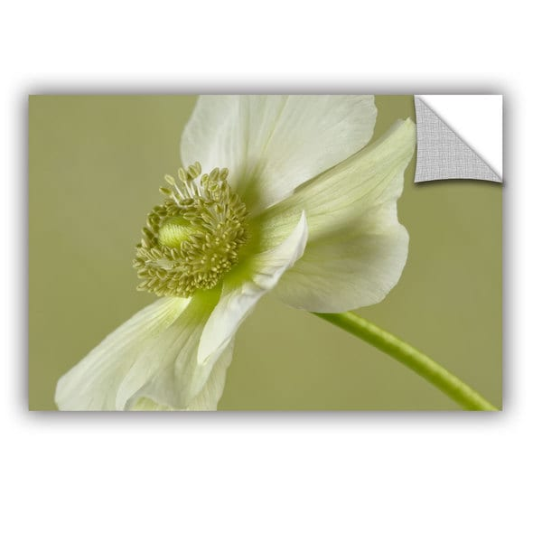 ArtAppealz Cora Niele 'Anemone White Green' Removable Wall Art