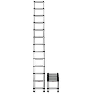 Telesteps Aluminum 16 ft Telescopic Extension Ladder