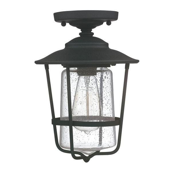capital lighting creekside collection 1 light black