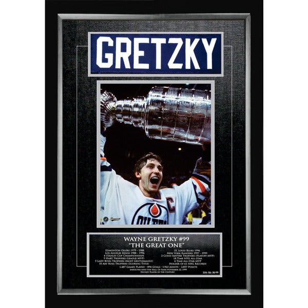 Wayne Gretzky Career Collectible - Museum Framed - Ltd Ed of 99