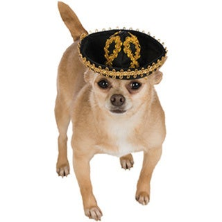 Black and Gold Sombrero Pet Costume