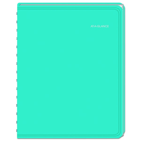 AT-A-GLANCE LifeLinks Professional 8 1/2 x 11 Teal 2016 Weekly/Monthly Appointment Book