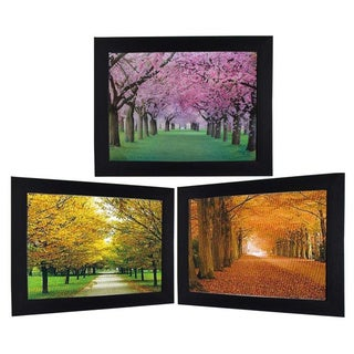 Park View in Three Different Seasons Framed 3D Wall Art