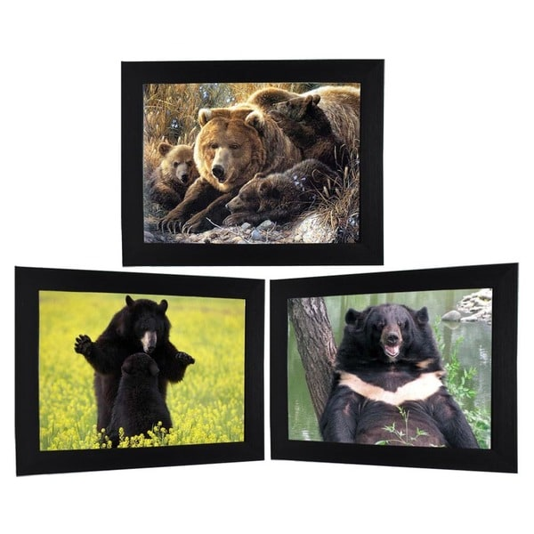 Grizzly Bears Framed 3D Wall Art