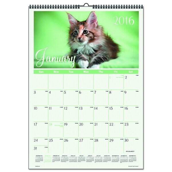 Kittens 2016 Wall Calendar