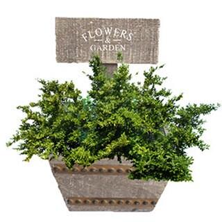 Welcome Planter Box