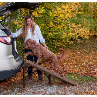 Pet Gear Free-standing Extra-wide Carpeted Pet Ramp