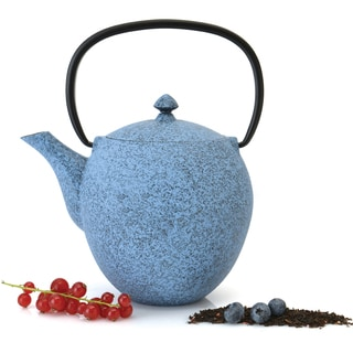 Studio 1.06-quart Blue Cast Iron Teapot